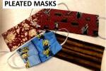 Pleated Masks